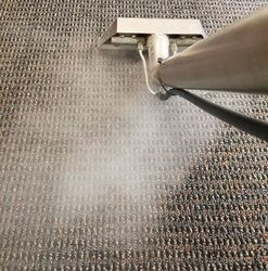 Real Deal Floor Care Bloomington Mn 55420 Homeadvisor