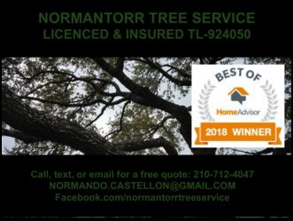 Tree Service Normantorr San Antonio Tx 78201 Homeadvisor