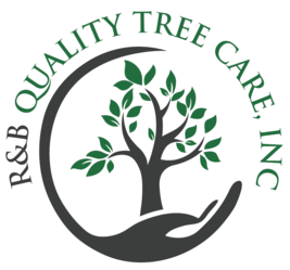 R Amp B Quality Tree Care Inc Roseville Ca 95747