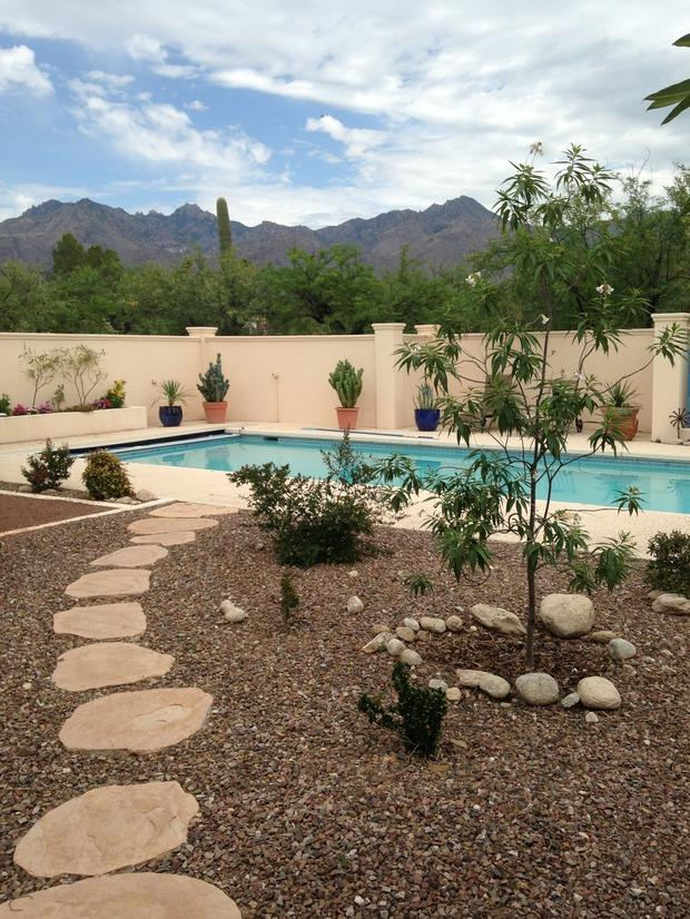 Southwestern pool in tucson potted cacti concrete and for Pool design tucson