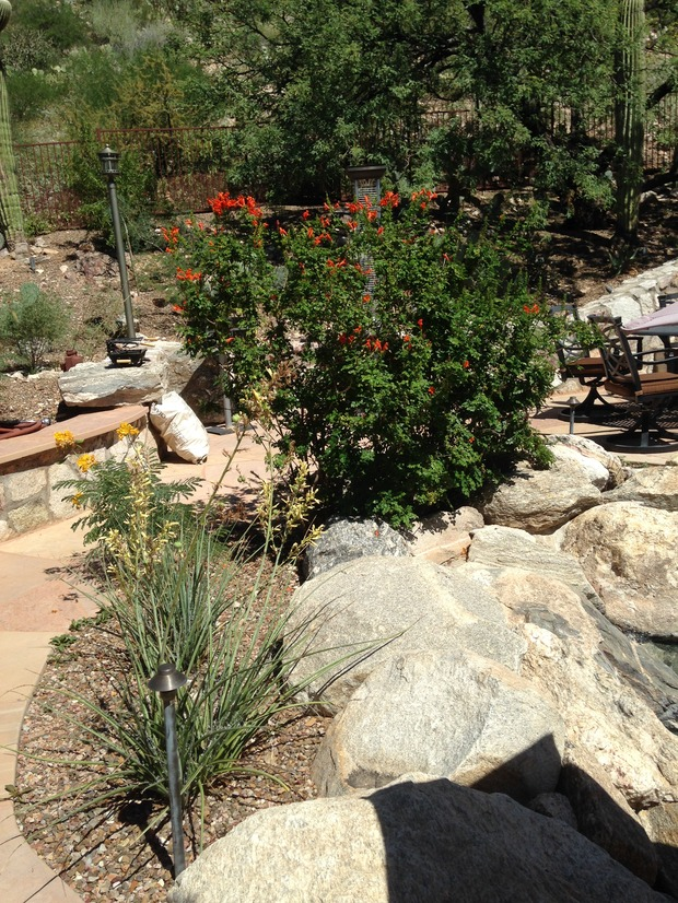 Rustic landscape in tucson outdoor furniture xeriscape for Landscaping rocks tucson