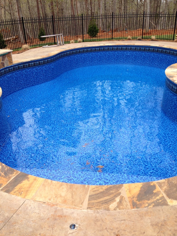 Traditional pool in knoxville trees curvy pool by for Pool design knoxville tn