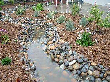 Functional Dry Creek Bed Coastal Garden Pictures And Photos