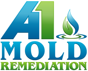 A1 Mold Remediation Llc Aventura Fl 33180 Homeadvisor