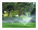 Sprinkler System2